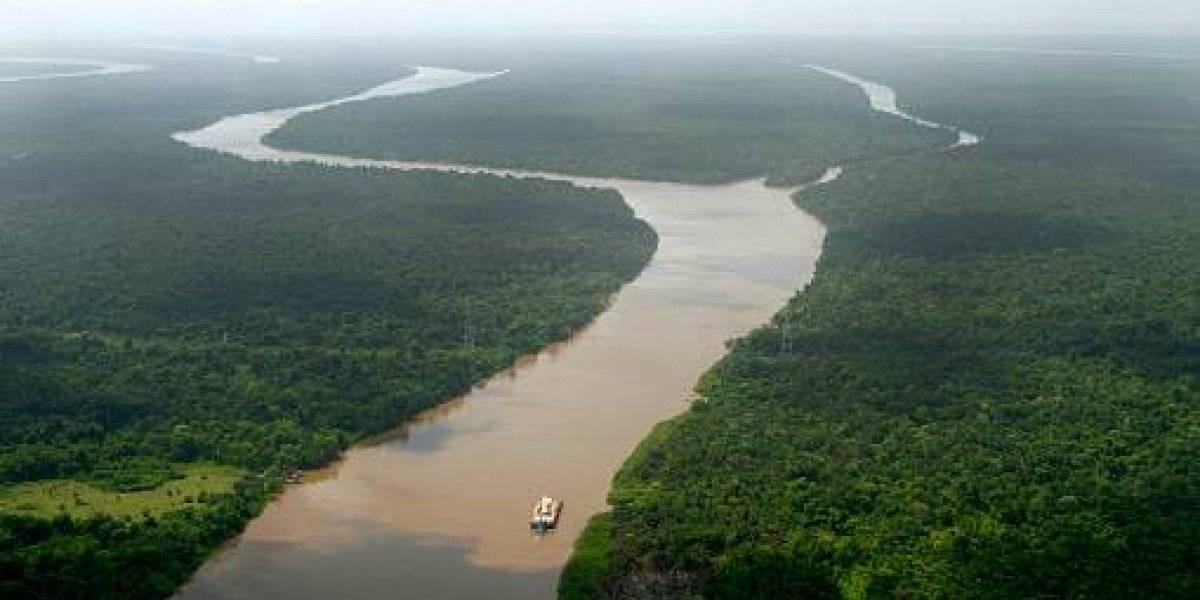 Bolsonaro quiere explotar la Amazonía brasileña con ayuda de Estados Unidos