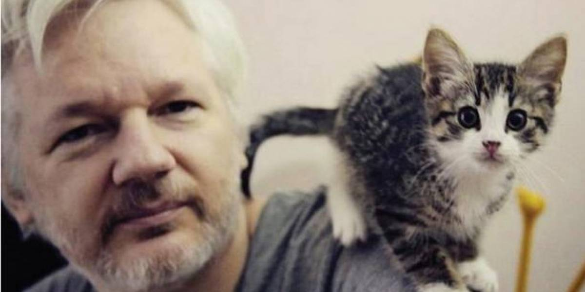 """Julian Assange es un """"terrorista cibernético"""", según Lenín Moreno"""