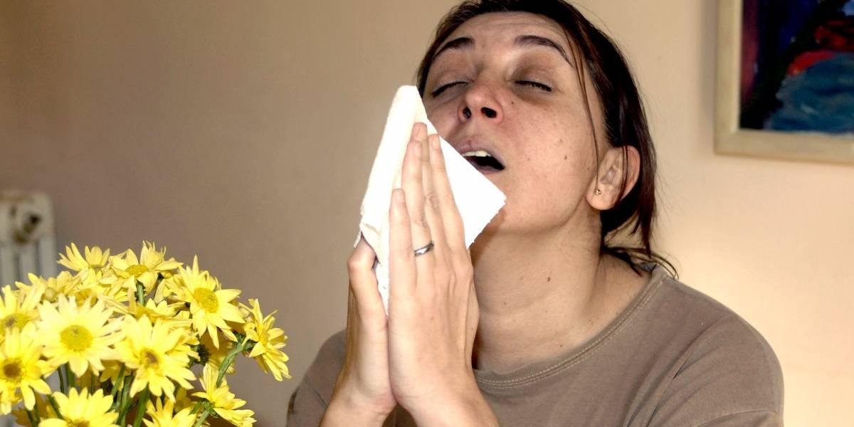 Rinitis y asma: enfermedades en aumento por la contaminación ambiental
