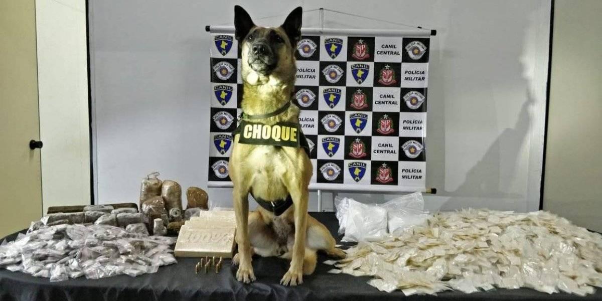 Operação policial no Morumbi apreende 20 kg de drogas