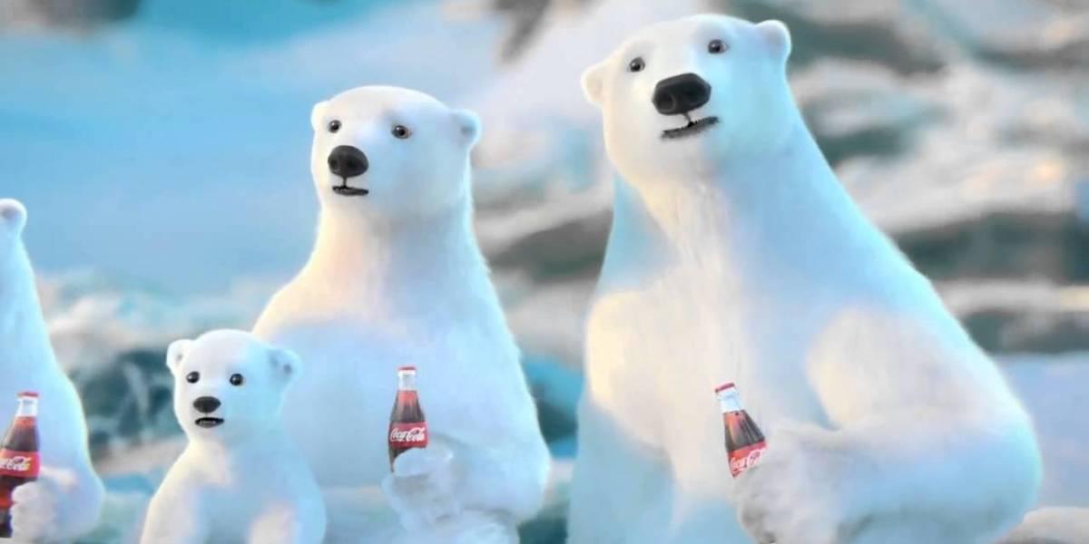 Los osos polares están comiendo plástico y su sangre está contaminada gracias al ser humano