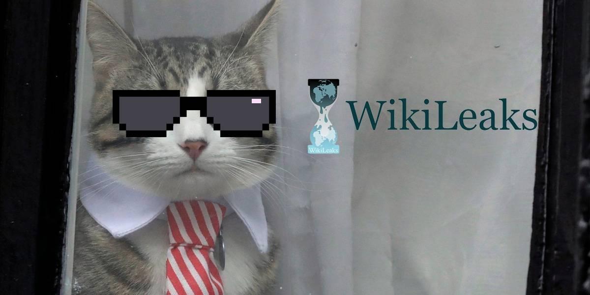 WikiLeaks niega que Julian Assange haya usado a su mascota como gato espía