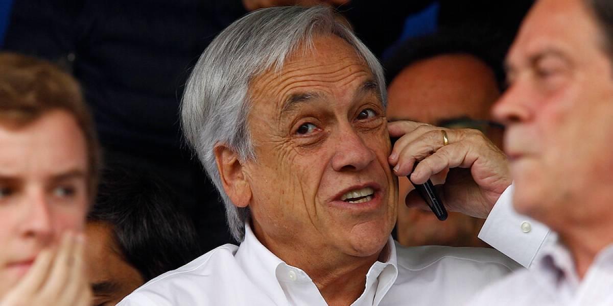 Dos toros chocando: el extraño video que compartió el Presidente Piñera en su cuenta de Instagram que intriga a las redes sociales