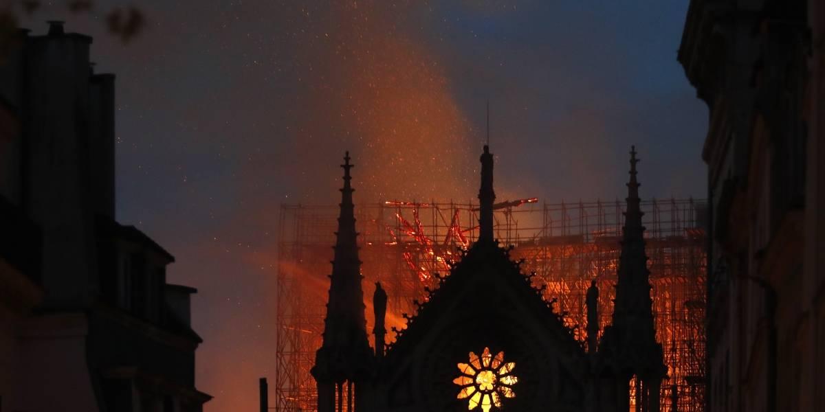 Comienzan a llegar primeros materiales para levantar a Notre Dame