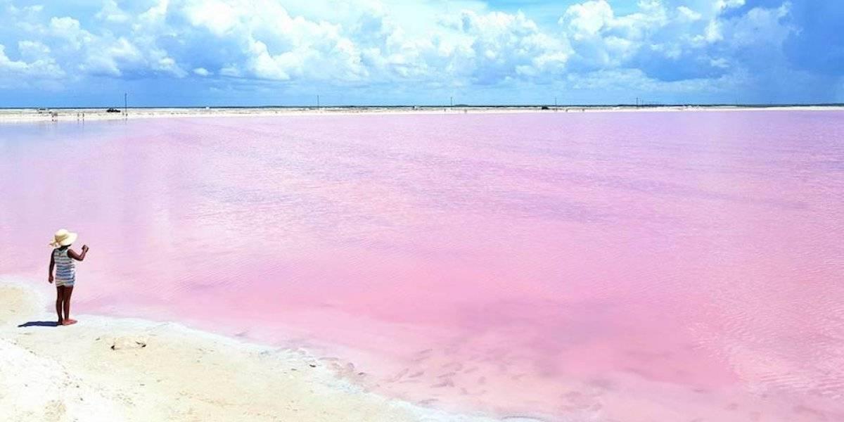 Emilia, el color que pinta de rosa 2019