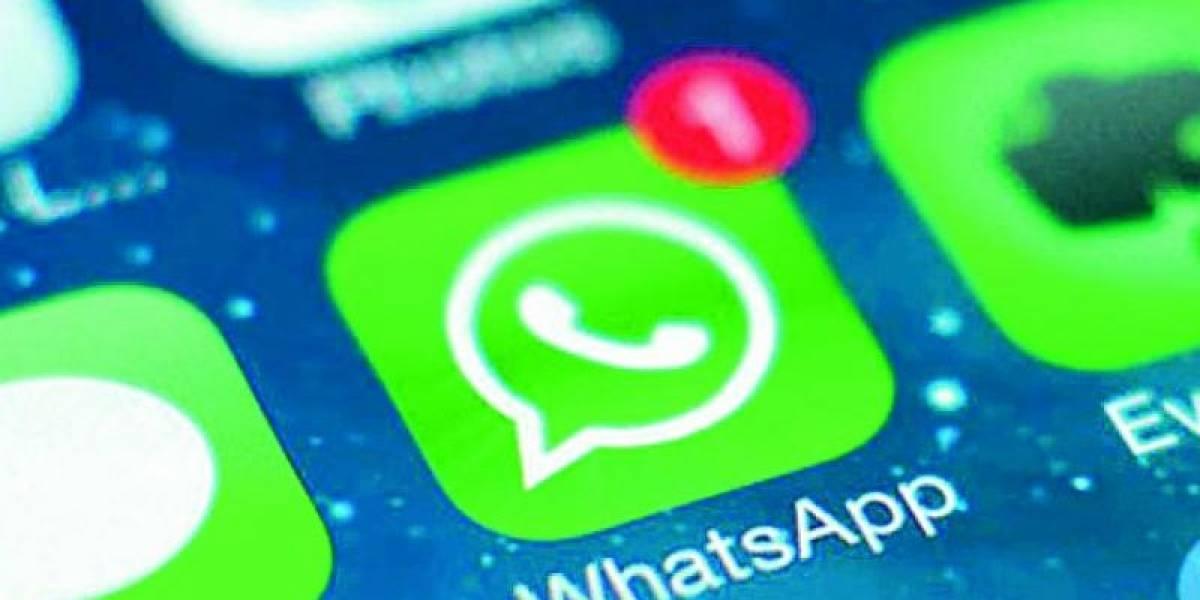 WhatsApp libera ajustes em  nova atualização beta para Android