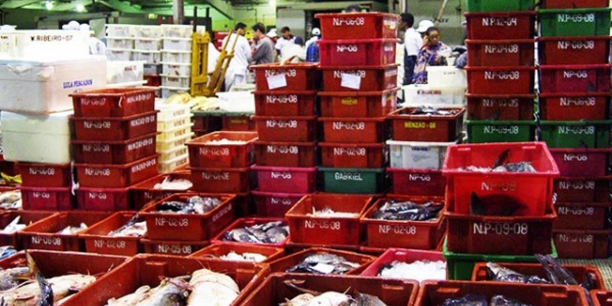 Governo teme disparo no preço de frango e peixes