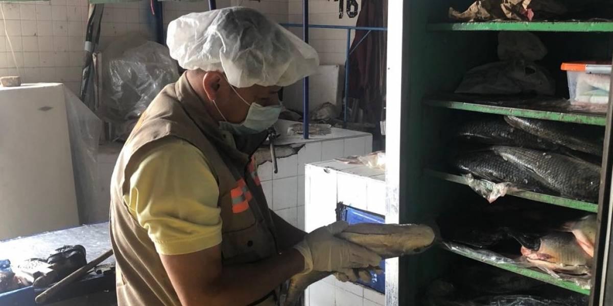 Autoridades vallecaucanas dan pautas para evitar intoxicaciones por consumo de pescado en Semana Santa