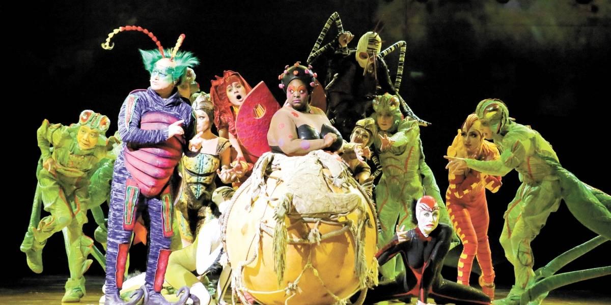 Cirque du Soleil: Inspirada no Brasil, Deborah Colker assina direção de 'Ovo', que chega enfim a SP