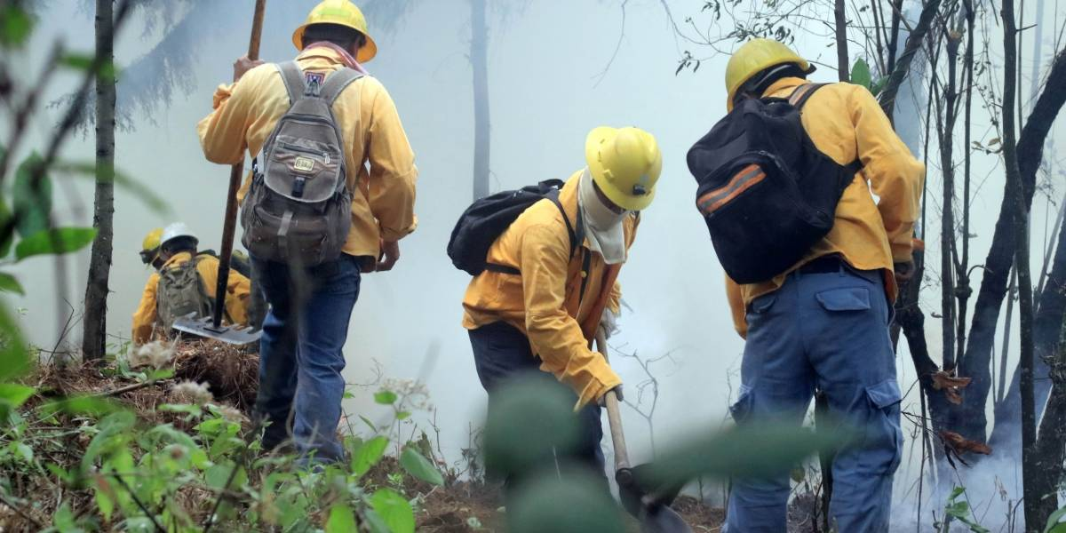 Sin plan frente a contaminación causada por incendios forestales