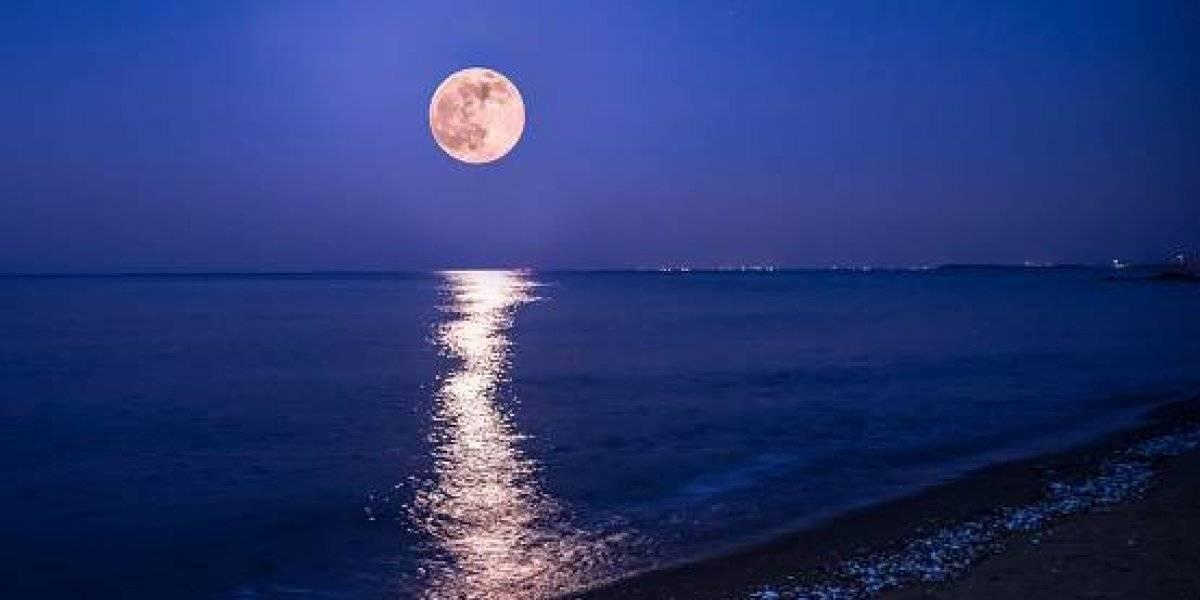 """Prepárese para la """"Luna Rosa"""" que iluminará el cielo en Semana Santa"""