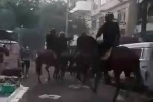 https://www.metrojornal.com.br/esporte/2019/04/20/torcedores-vasco-botafogo-presos-agressao-policiais-e-cavalos.html