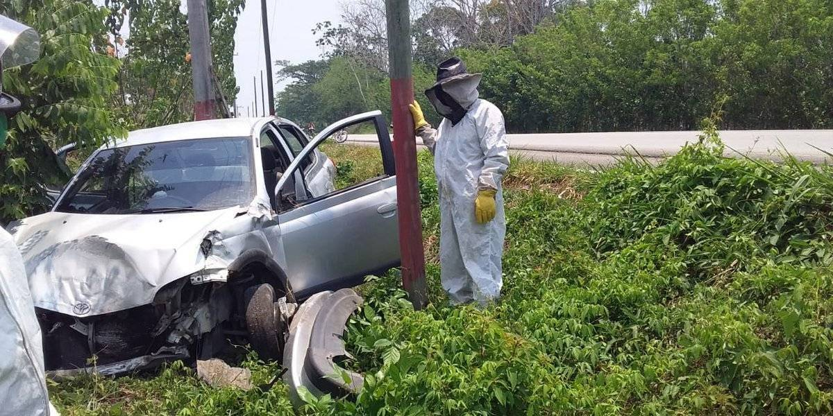 Accidente en Petén deja un fallecido y varios atacados por abejas