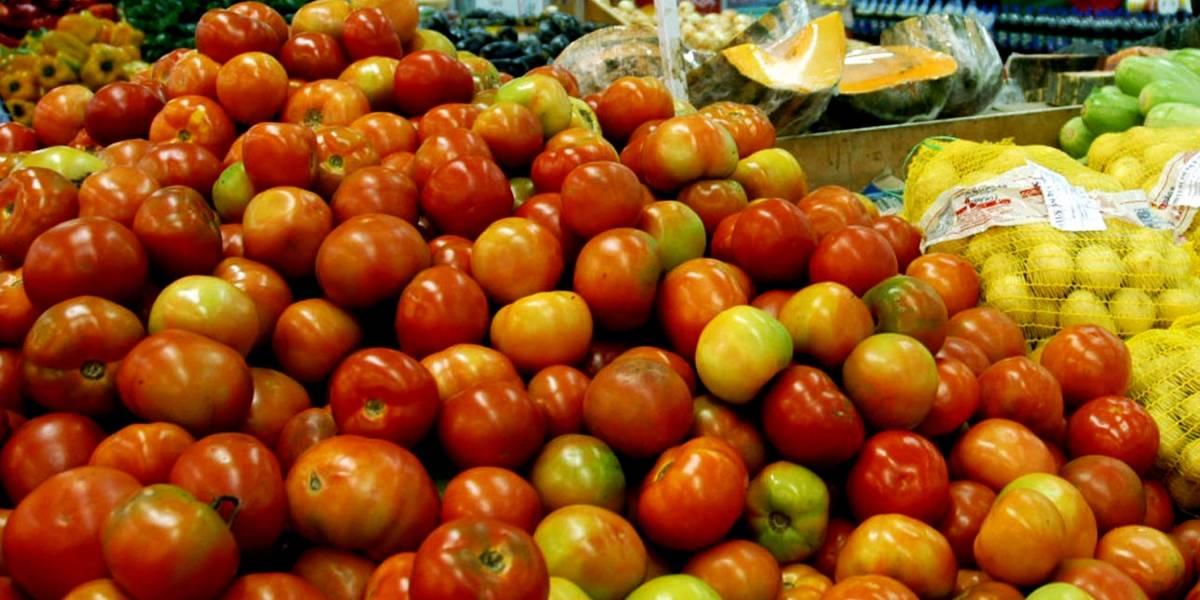 Preço do tomate segue em alta no atacado