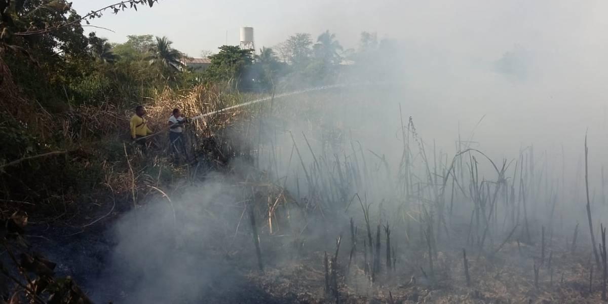 Más de 3 mil hectáreas han sido consumidas por fuego