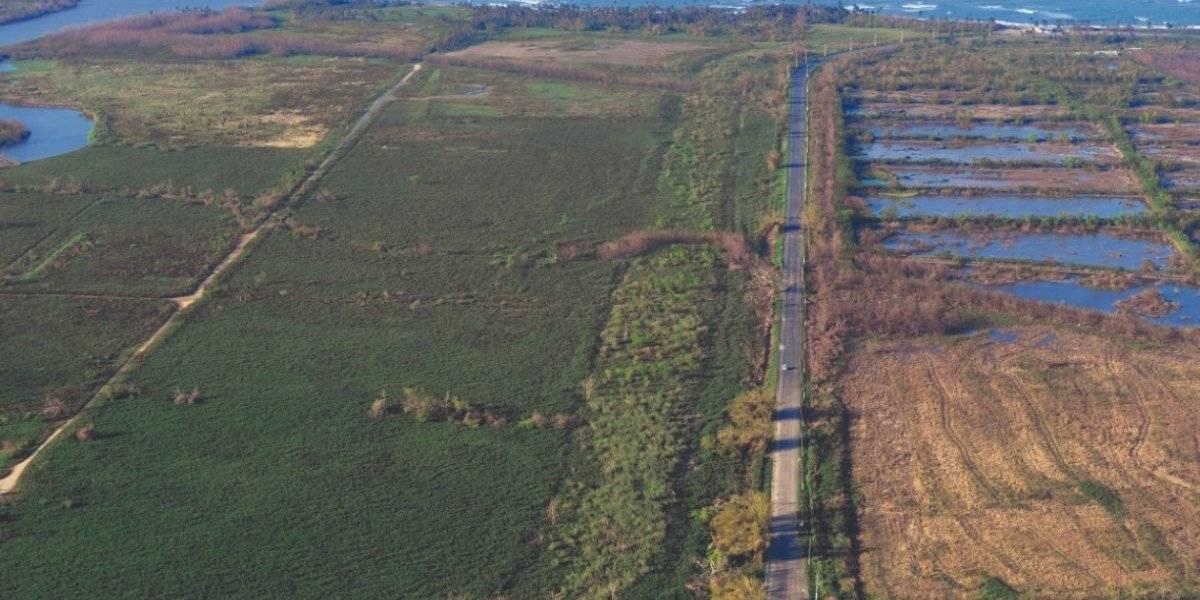 Vital la educación de la industria agrícola para atajar el cambio climático