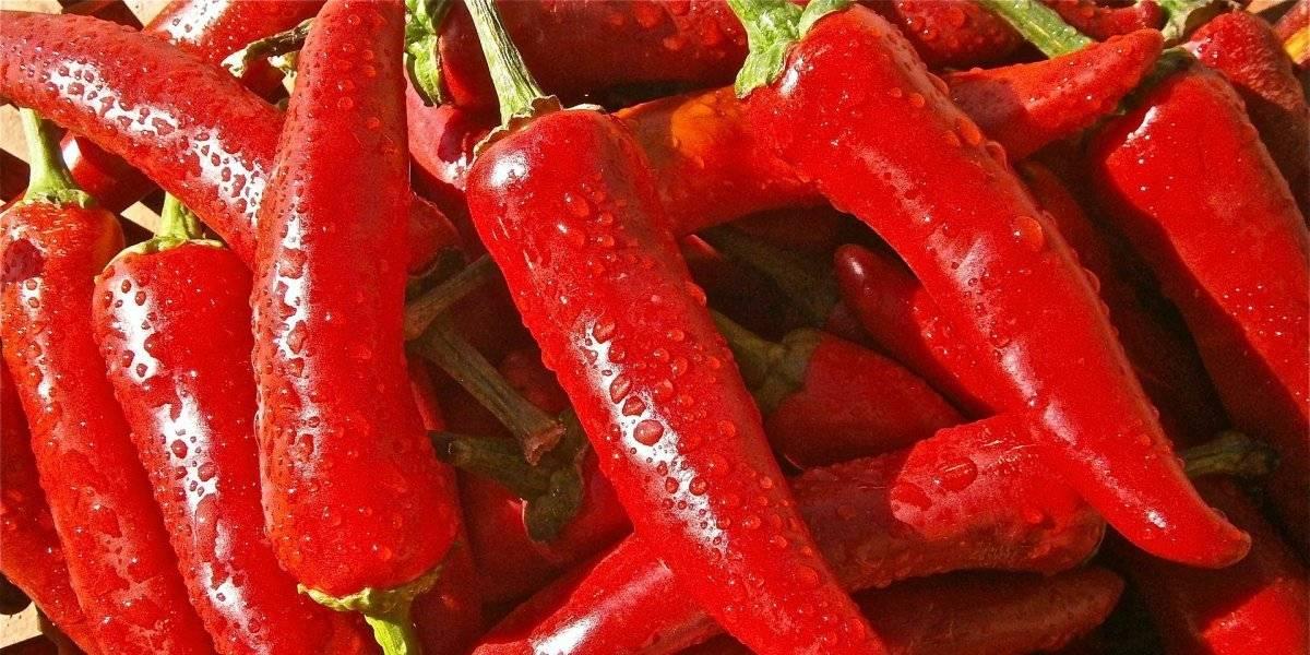 4 benefícios das pimentas que as tornam essenciais até para turbinar o desempenho sexual