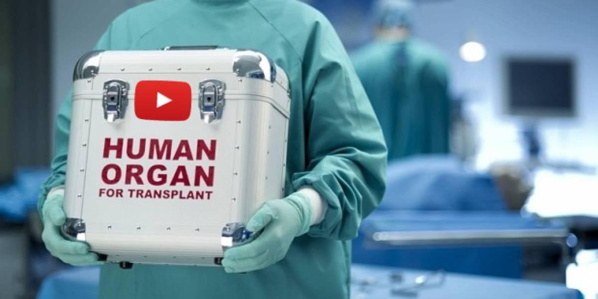 Hay personas tratando de vender su riñón en los comentarios de un video de YouTube