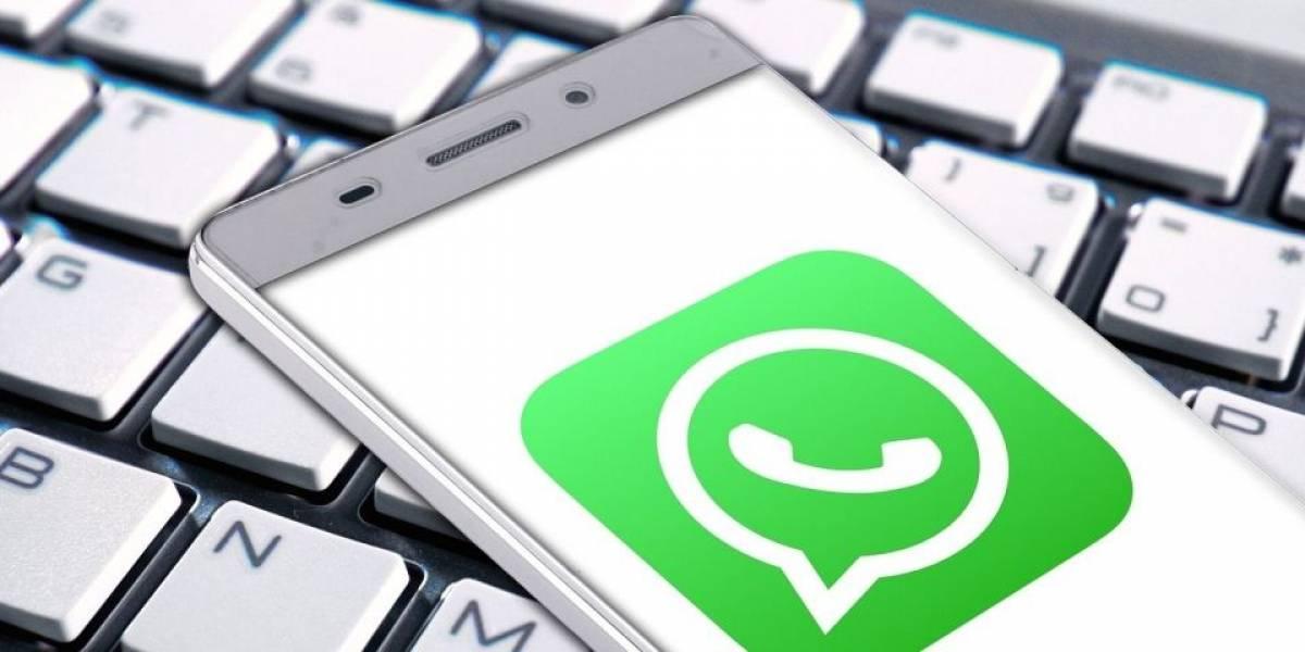 WhatsApp para Android e iOS deve receber novo recurso já no próximo ano
