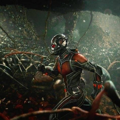 Ant-Man y el Reino Cuántico