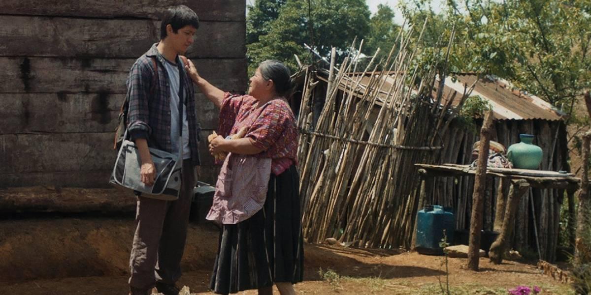"""Filme guatemalteco """"Nuestras madres"""", premiado en Cannes"""