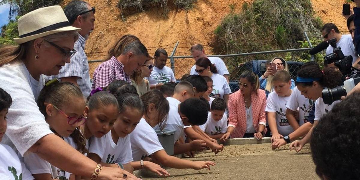 Estudiantes de escuela en Orocovis cultivarán sobre 20,000 semillas de café