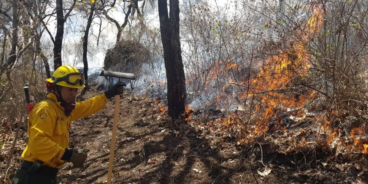 Conred labora para sofocar 17 incendios forestales