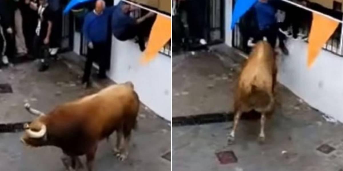 Gravam momento em que touro ataca homem em festival anual na Espanha