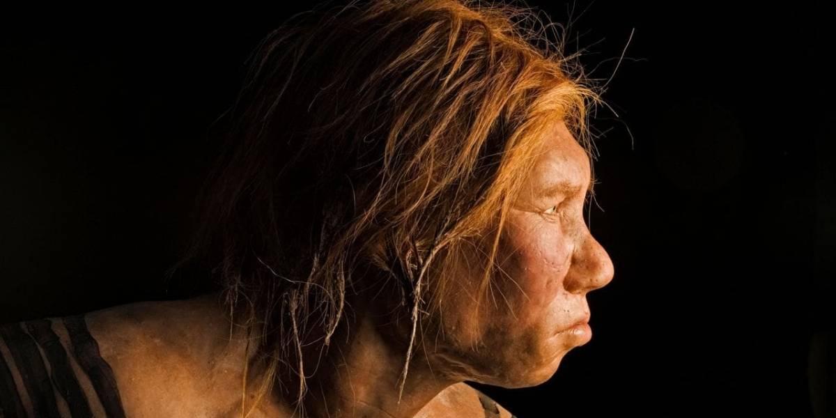 Los Denisovanos, los hermanos antiguos del Homo Sapiens, colonizaron el Tíbet según hallazgo