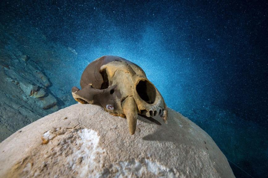 México restos prehistoria