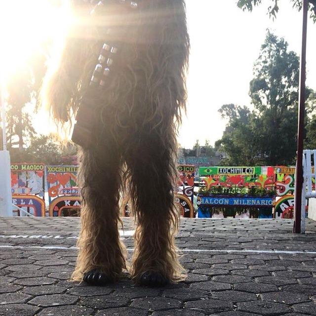 Chewbacca México