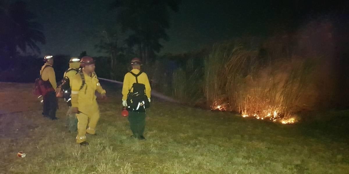 Apagan fuego en Toa Baja que afectó 100 cuerdas de terreno