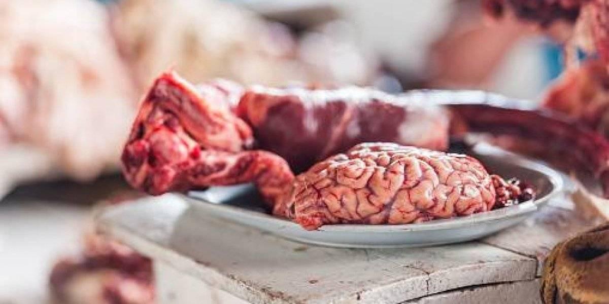 """Los cerebros """"son muy sabrosos"""": polémica en colegio luego que niña caníbal rusa les contara a sus compañeros qué sabe la carne humana"""