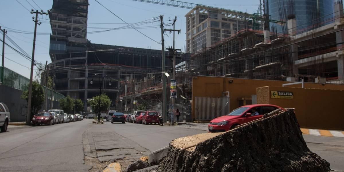 Liberan a trabajadores de Mitikah que talaron árboles; empresa se compromete a reforestar