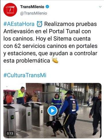 Captura perros en TransMilenio