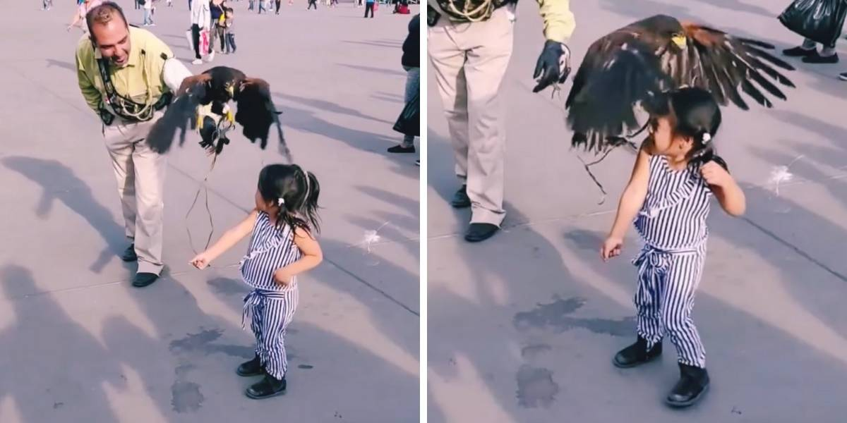 Video: pequeña es atacada por un águila y madre en vez de ayudarla se burla de ella