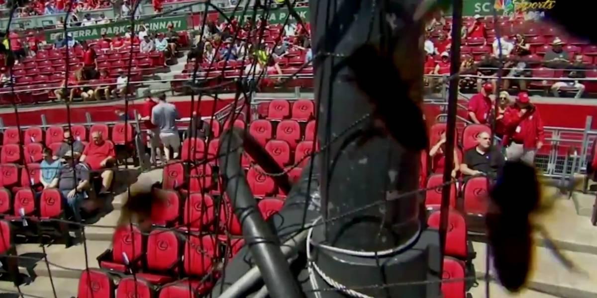 Enjambre de abejas invade estadio de las Grandes Ligas