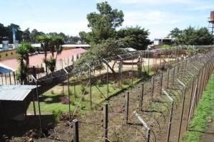 Granja de Rehabilitación Penal Pavón.