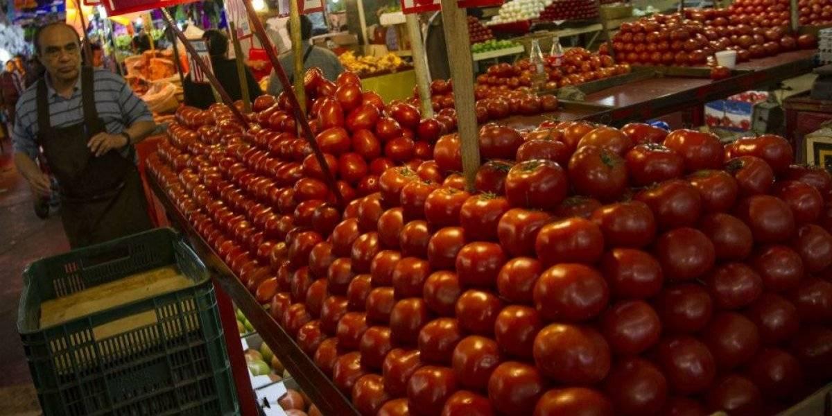 Productores advierten que no pagarán aranceles al jitomate