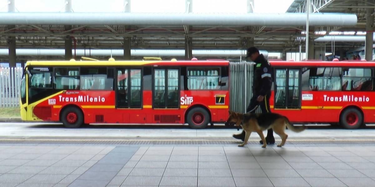 Video: la reacción de los perros de TransMilenio cuando un usuario se cuela