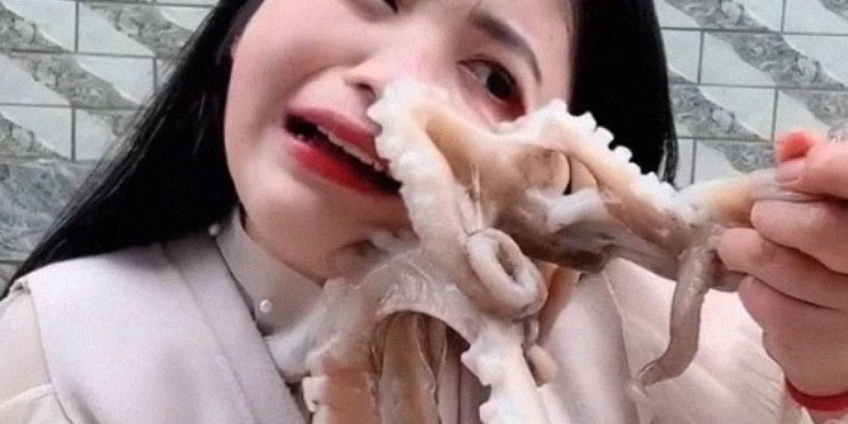 ¿Karma instantáneo? Bloguera china aprendió de la peor forma por qué no es buena idea comer pulpo vivo