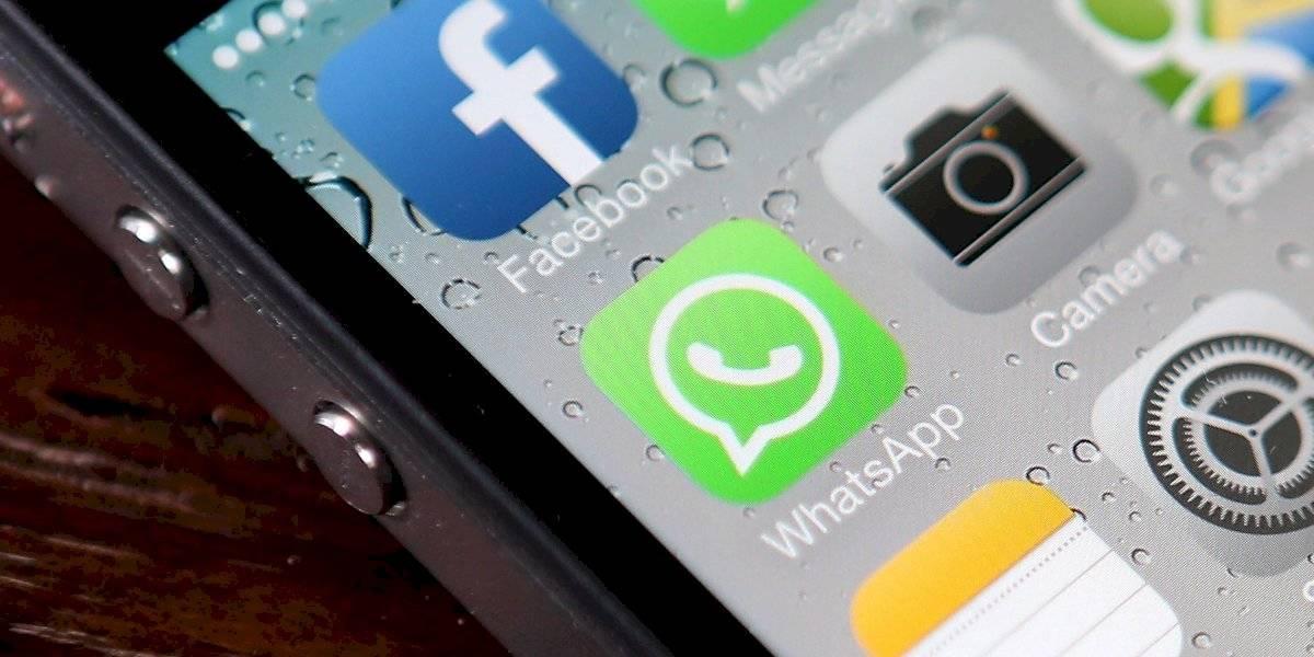 Novo golpe no WhatsApp promete panetone de marca famosa gratuitamente