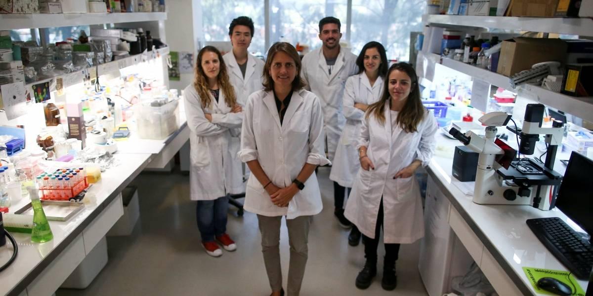 Em meio à crise econômica, bióloga argentina vai a game show levantar fundos para pesquisa sobre câncer