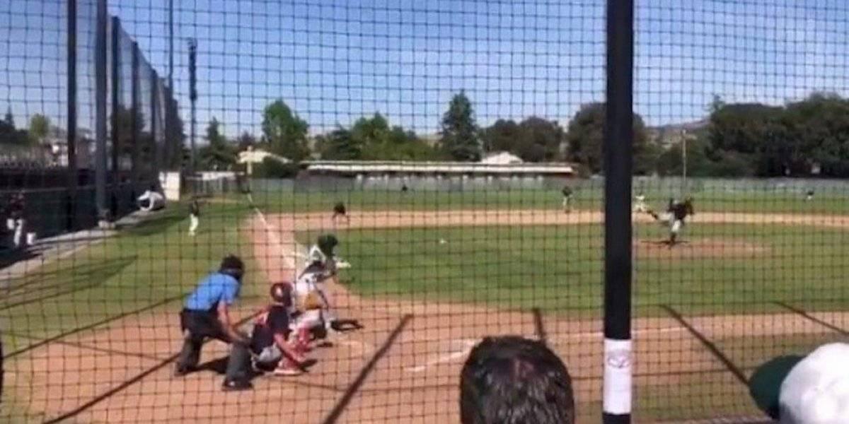 Paloma recibe pelotazo en pleno partido de béisbol