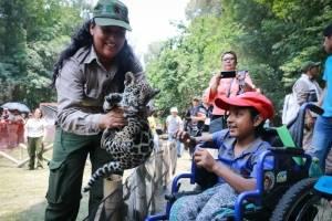 Nacimiento en el Zoológico de Tlaxcala