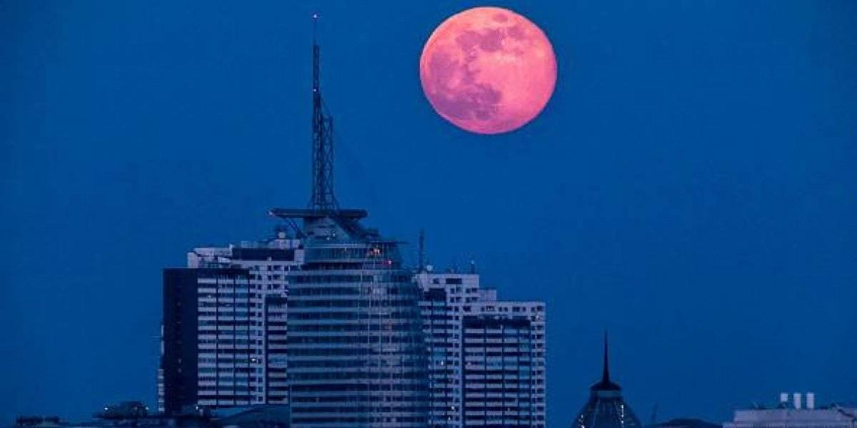 """La luna se está encogiendo: informe de la NASA revela que """"nuestro vecino"""" se arruga como una pasa por culpa de los""""terremotos"""""""