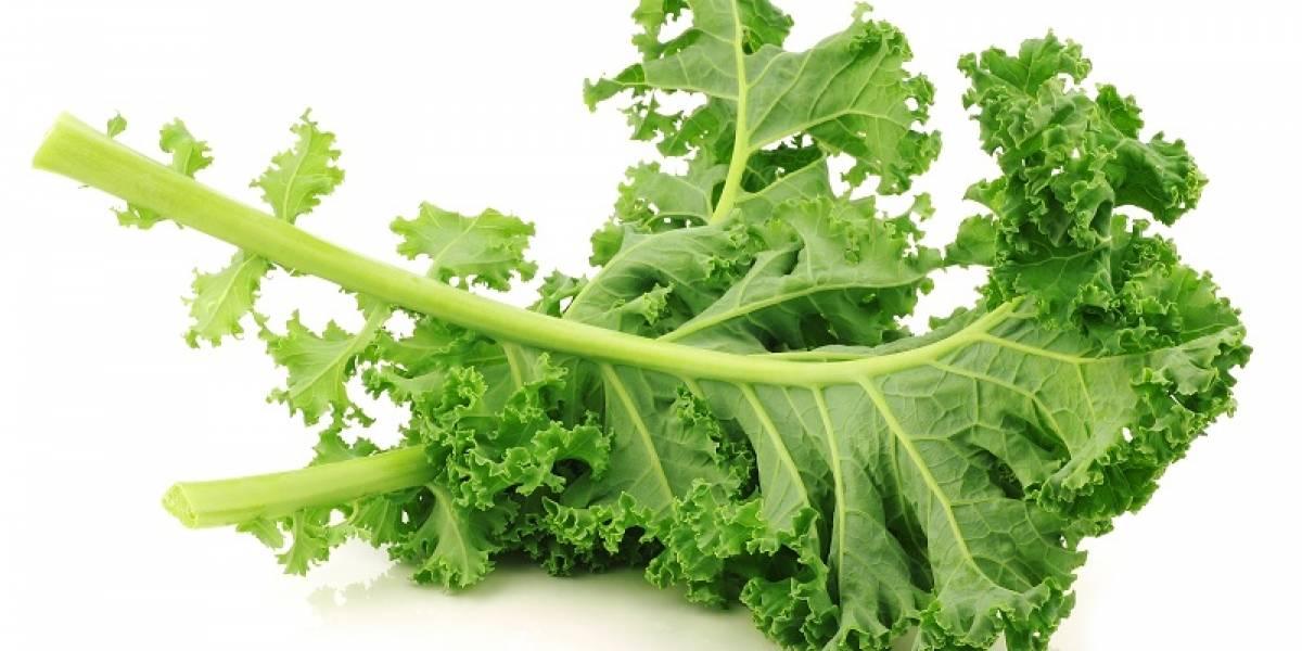 """Kale: Desbancando los mitos  de los """"súper  alimentos"""""""