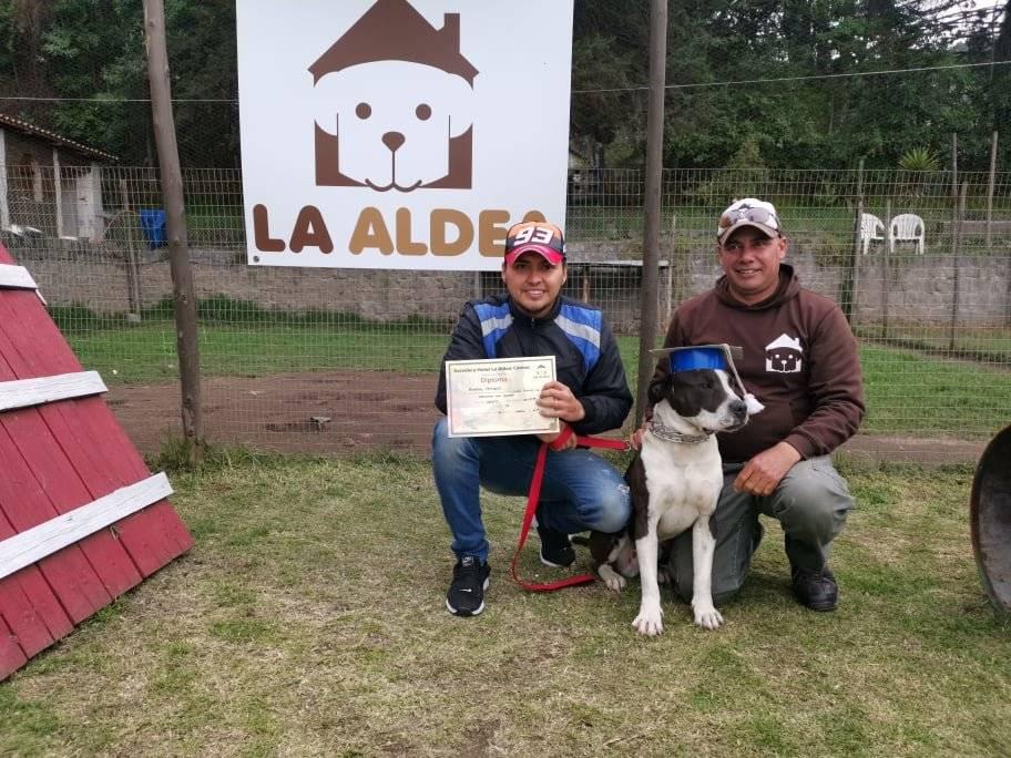 Graduación de perros en La Aldea Sandra Zambrano Metro Ecuador