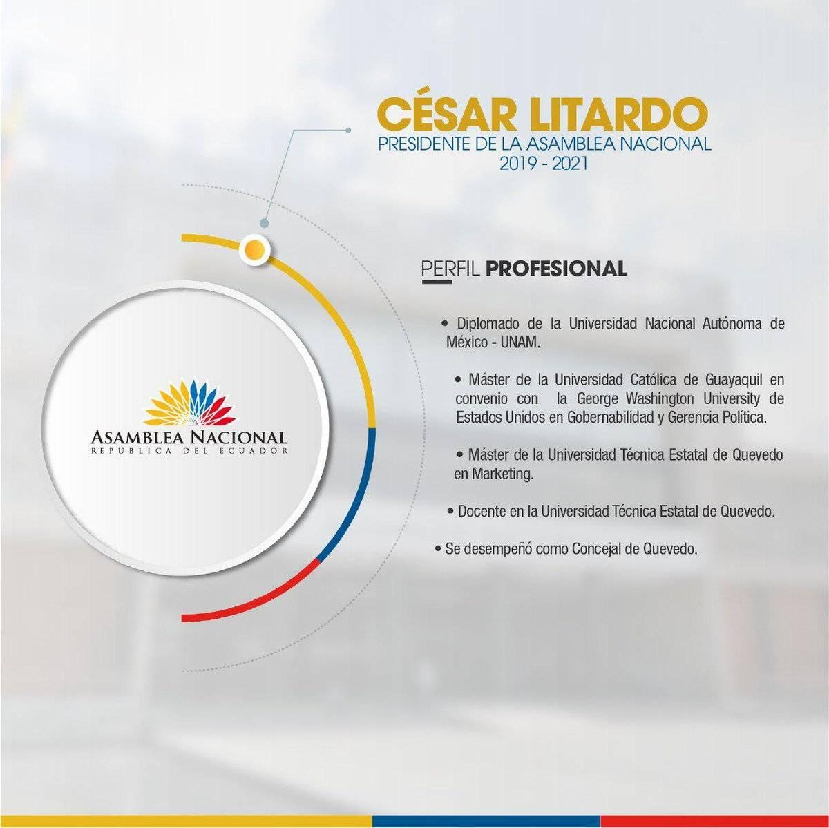 Cesar Litardo perfil profesional