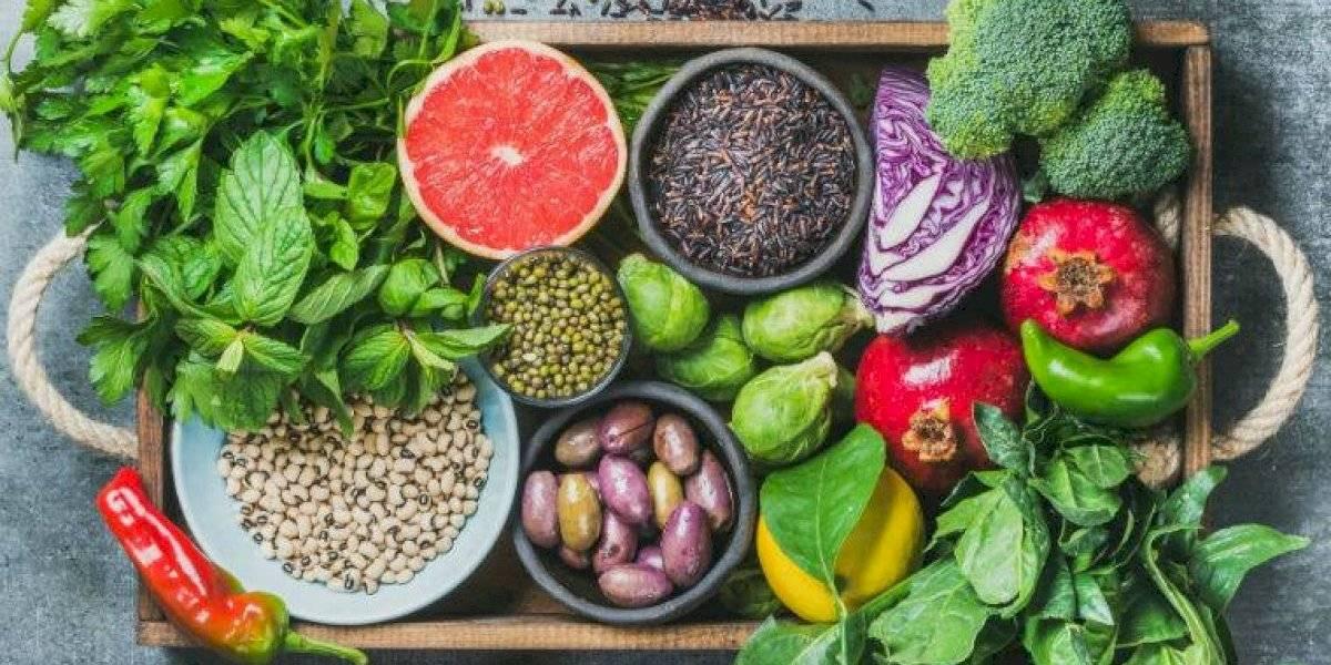 diferença entre dieta cetosisgenica e low carb